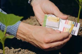 Как узнать кислотность почвы с помощью лакмусовой бумажки