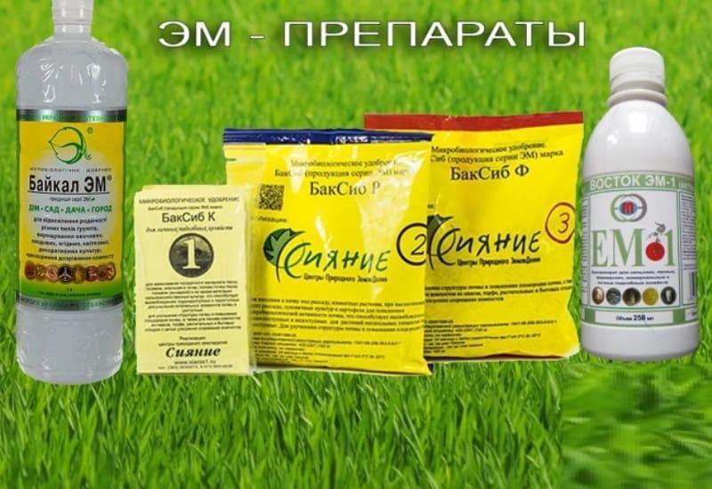 Как избавиться от сорняков эм препараты